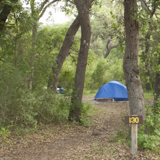 West Verde Creek Campsite (#130). | Copyright © Shannon D. Blackburn