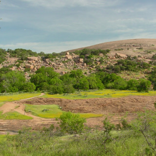 Wildflowers and the pink granite domes of Enchanted Rock